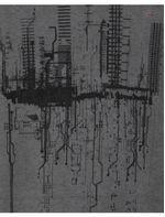 CS011983_016_2-ULTRAZOOM-107-CAMISETA-ROOTED-CITIES-PA